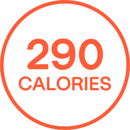 """290 CALORIES"" written in an orange outlined circle."